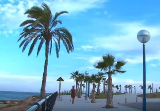 playa-flamenca-3