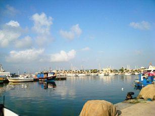 Marina at Santa Pola