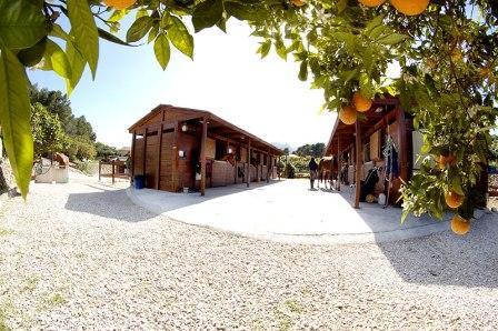 horse-riding-Costa-Blanca