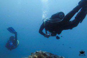 underwater-157