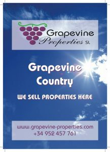 Grapevine Properties