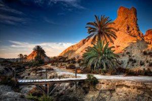 tabernas-desert-too