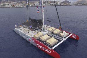 freebird-catamarans-tenerife-f15-1